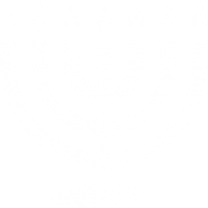 Cultures-Menorah-icon-white