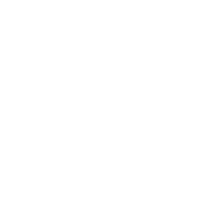 Very-Basic-Idea-icon-white